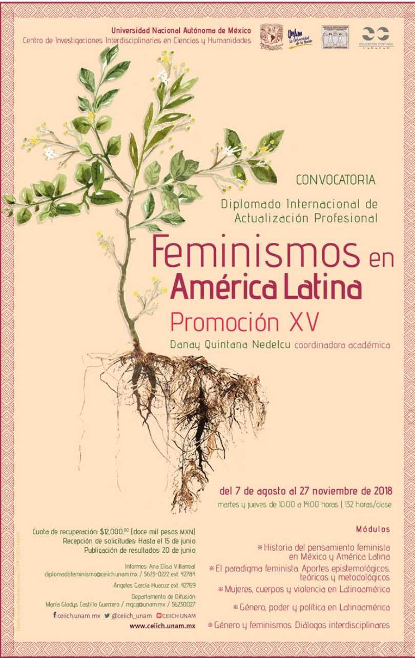 Feminismos en América Latina