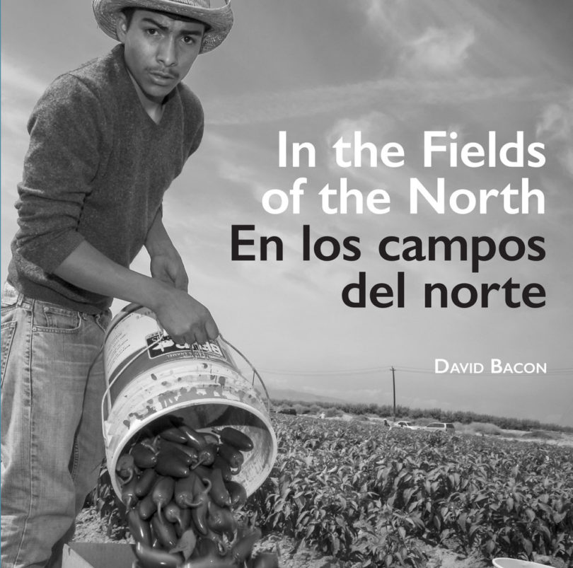 In the Fields of the North | David Bacon