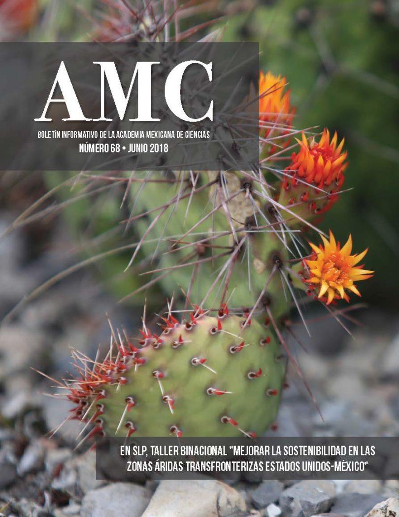 Boletín AMC, núm. 68, junio 2018