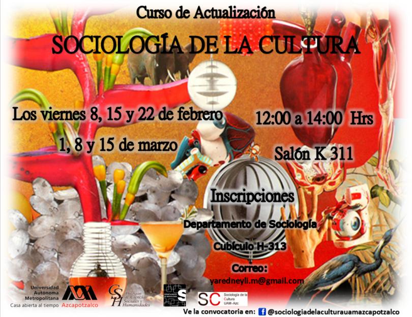 Curso: Sociología de la Cultura
