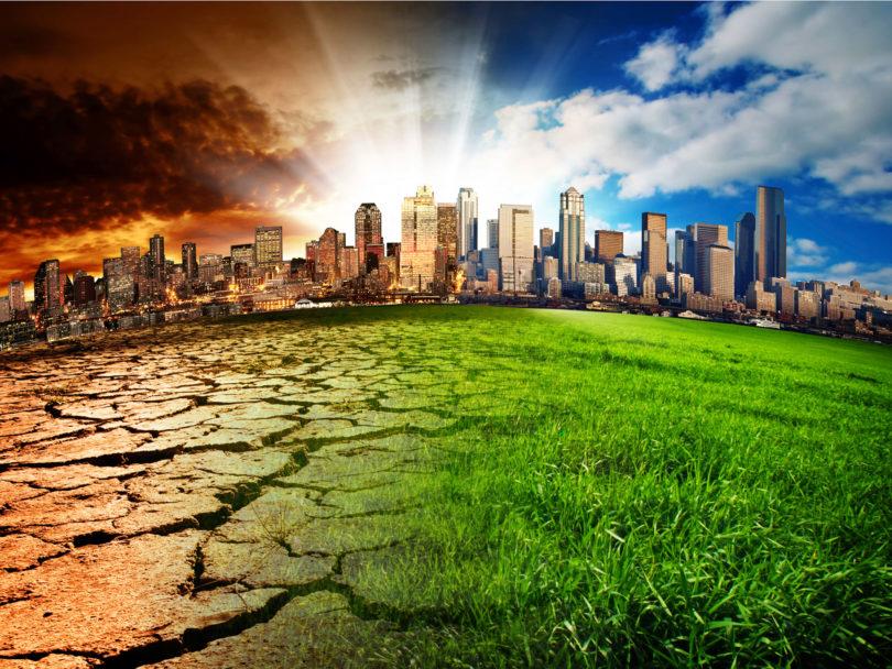 Activismo ambiental en las ciudades