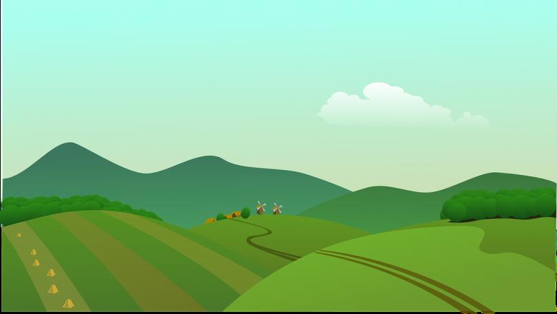 V Coloquio sobre el Campo y las Ruralidades