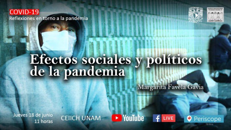 Efectos sociales y políticos de la pandemia