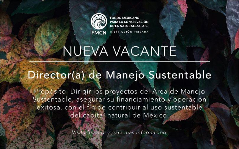 Director de Manejo Sustentable