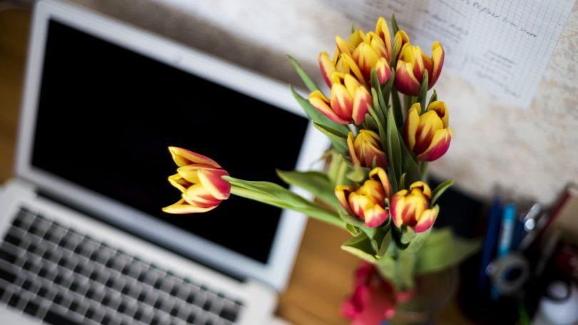 El trabajo desde casa como una alternativa para el desarrollo de actividades laborales y económicas