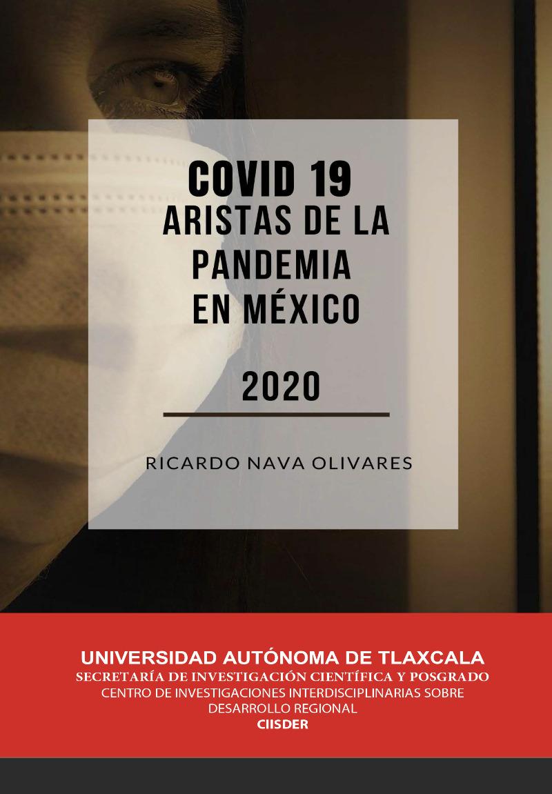 Covid 19. Aristas de la pandemia en México 2020